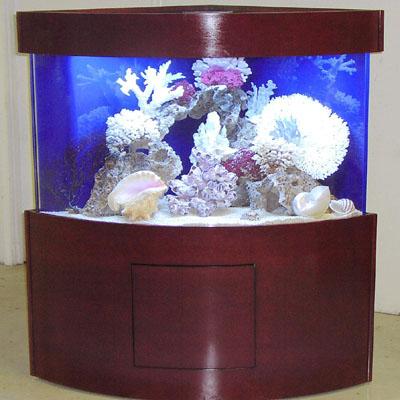 Acrylic Aquariums Tenecor World S Leading Aquarium