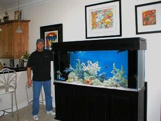 Fish tank maintenance 150 gallon how to set up a for 150 gallon fish tank for sale craigslist