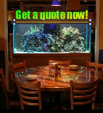 acrylic fish tanks nationwide delivery acrylic aquariums inwall aquariums on sale now