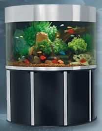 Acrylic aquariums, All Glass fish tanks, Custom  made aquariums, Wood Cabinet Stands, Wood Canopys