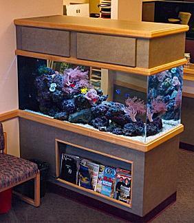 waiting_room___  Gallon Aquarium Home Design on 50 gallon aquarium designs, 125 gallon marineland, home aquarium designs, 36 gallon aquarium designs, 75 gallon aquarium designs, 55 gallon aquarium designs,